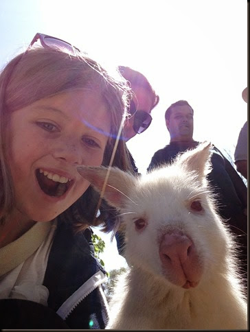 Selfie Wallaby