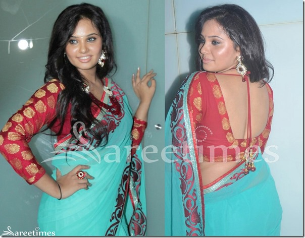 Aarushi_Full_Sleeves_Saree_Blouse