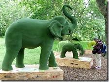 botanics elephant