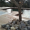 piscine bois modern pool 5.jpg
