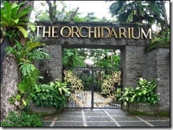 the orchidarium in luneta park manila