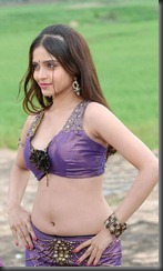 Sheena Shahabadi hot in halfsaree