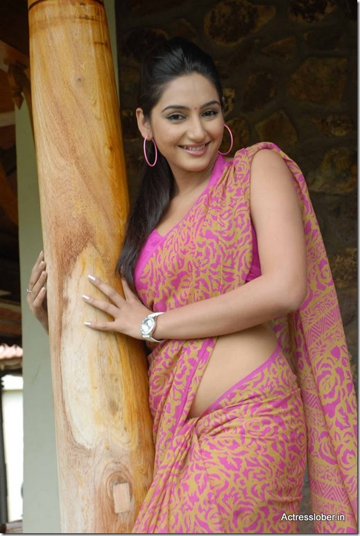 Ragini  Dwivedi Hot Saree South Actress (3)