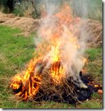 [hay burning]