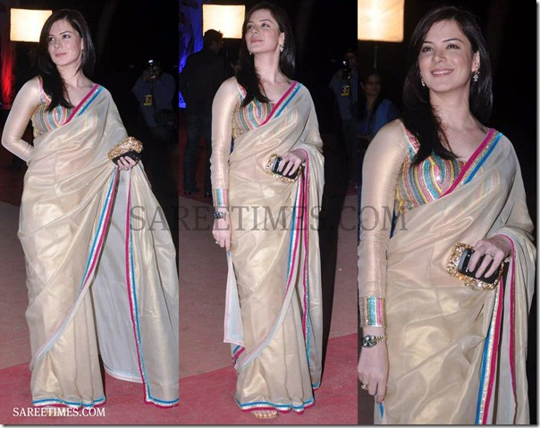Zarine_Khan_Gorgeous_Saree