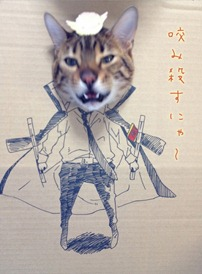 Best Cat Cosplay Ever!