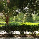 Turfan - Parc