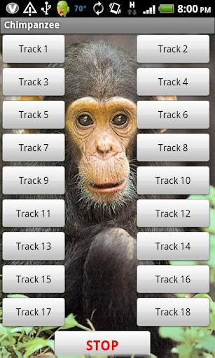 チンパンジーのサウンドエフェクト