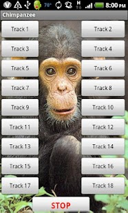 Chimp Sound Effects - screenshot