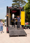 Local rider Nick Gauntlett's rider Electron arriving at Badminton
