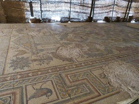 Obiective turistice Iordania: Mozaicuri la Nebo