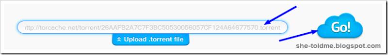 ZBigz+Torrent+URL