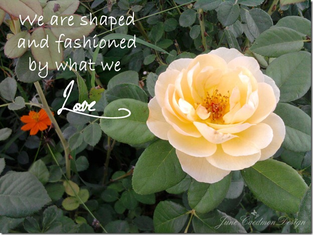 Shaped_Fashion_Quote