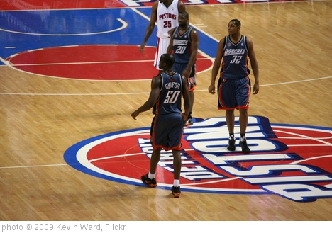 'Charlotte Bobcats' photo (c) 2009, Kevin Ward - license: http://creativecommons.org/licenses/by-sa/2.0/