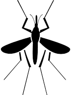 Ross River Virus (RRV) is a mosquito borne alphavirus which causes a disease ...