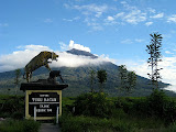 Gunung Kerinci from Kersik Tua (Andy Dean, April 2011)