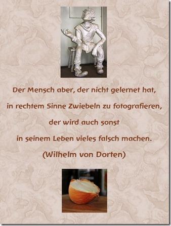 Dorten_Zwiebel