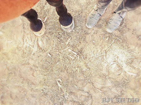 Dusty feets for the both of us | A Riding Habit