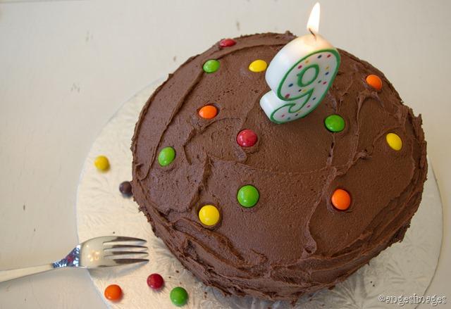IMGP6537_birthday cake_04