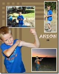 Anson 2011