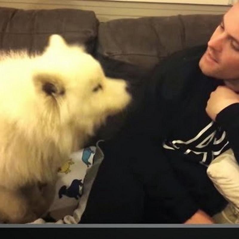 Σκυλί δίνει αγκαλίτσες
