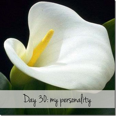Day 30 my personality