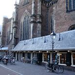 church in haarlem in Haarlem, Noord Holland, Netherlands