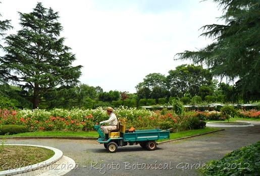 Glória Ishizaka -   Kyoto Botanical Garden 2012 - 135
