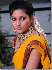 ritu_barmecha_pic IN SAREE