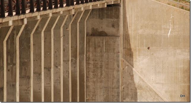 06-07-13 C Tetons Jackson Lake Dam and Reservoir (19)a