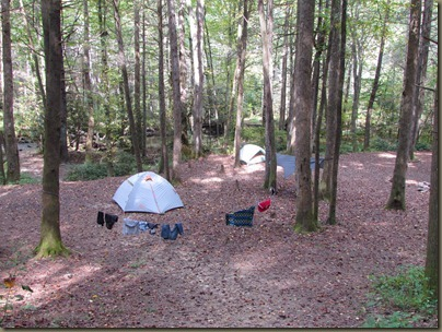 tent camping Cat gap lou trail in wildlife center in pisgah near trout hatchery