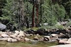 Ça c&#039;est en haut de la cascade précédente. Les troncs marrons au centre, c&#039;est des séquoias pas géants.<br /> Les trucs verts c&#039;est des plantes; le truc translucide en bas,  c&#039;est de l&#039;eau qui va bientôt chuter; et le reste c&#039;est des cailloux.