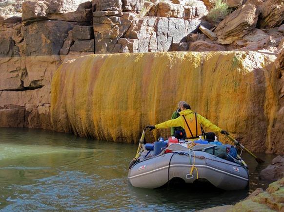pumpkin spring colorado river 4