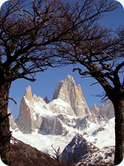 santacruz_Fitz_Roy_framed_trees_(colour_balans)