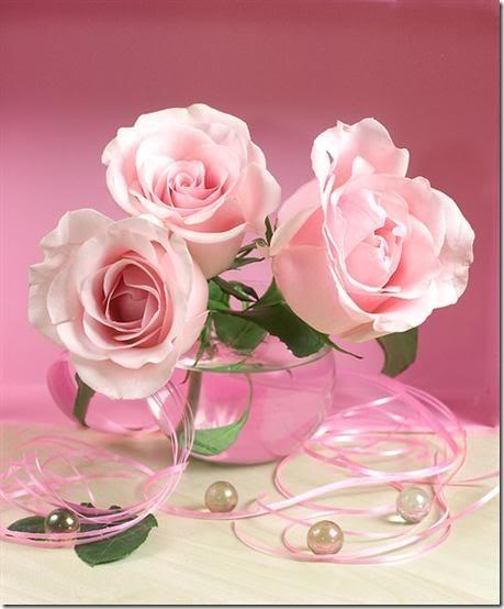 flor día del amor (20)