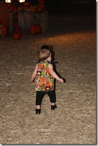 pumpkin patch 035