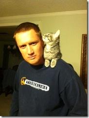 kitty 6
