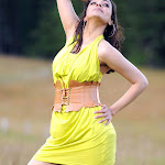 kajal-agarwal-wallpapers-15.jpg