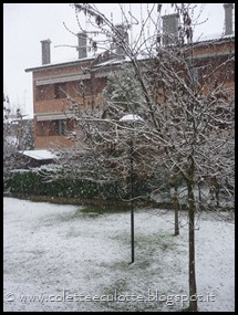 Neve a Padulle - 28 gennaio 2014(10)