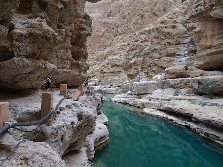 Apa verde de la Wadi Shab