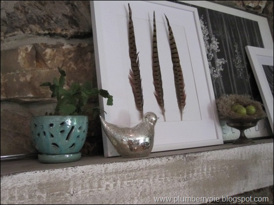 feathers for fall mantel