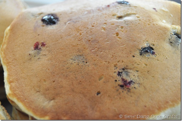 Close-up-blueberry