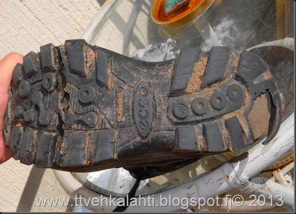 kengät sinivuokot muurahaisa 004