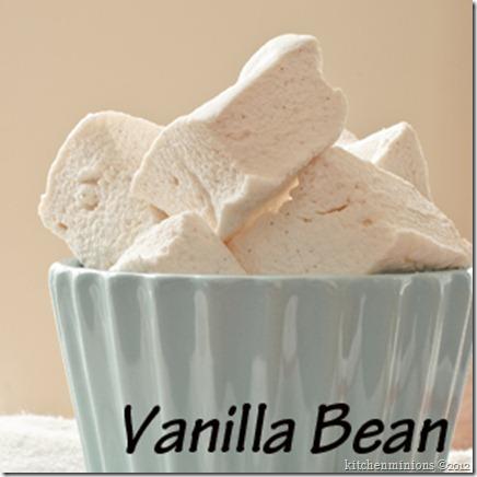 Vanilla Bean-022