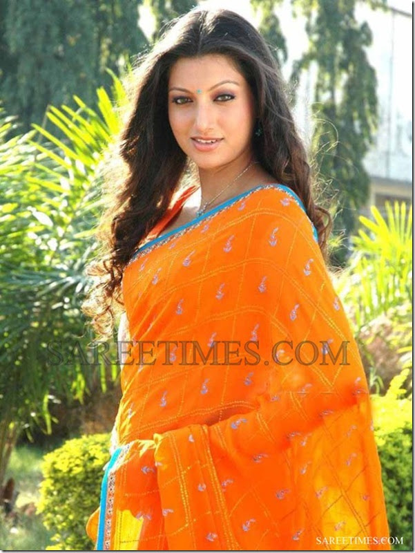 Hamsa_Nandini_Orange_Saree