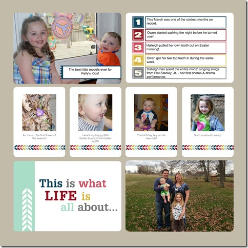 Project Life 2013-009