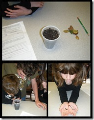 Science 1 - Earthworms