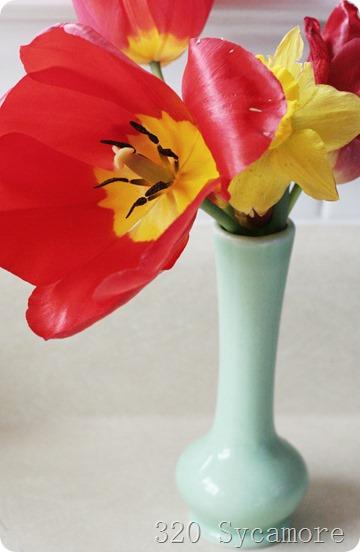 last tulip