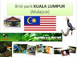 Ptačípark KualaLumpur Malajsie