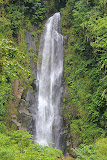 One of The Trafalgar Falls - Roseau, Dominica